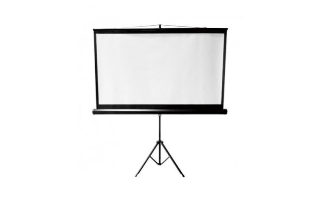 Dinon  Projection Screen 160cm X120cm